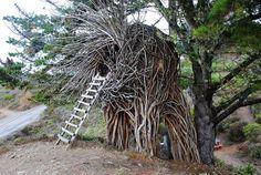 The Nest at Treebones Resort - Big Sur, California