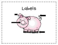 Label the pig