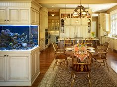 Reef tank in the kitchen