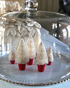 Tiny Forest:   In Martha's Bedford, New York, kitchen, she places little Christmas trees beneath a glass dome.