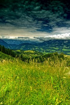 Enjoy breathtaking views of the Kitzbueheler Alps, Austria #austria #kitzbueheleralps #hiking #green #gras #nature #landscape