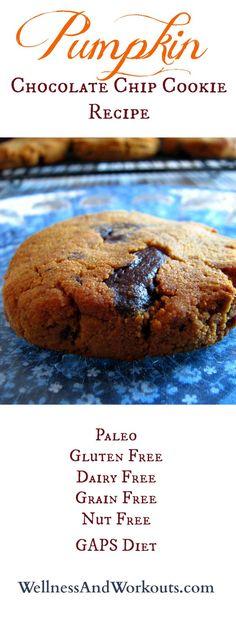 chocolate chips, chocolates, paleo cookie recipes, chocol chip, chip cooki, paleo pumpkin cookies, paleo grain free, gaps diet recipe, cooki recip