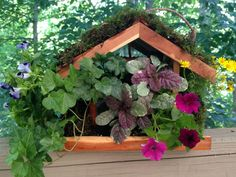 Bird feeders are for more than attracting wildlife to your garden. Click through to learn how to turn a feeder into a hanging planter filled with your choice of pretty plants.