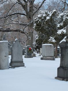 Love graveyards :)