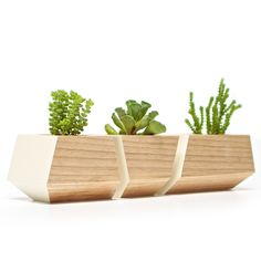 these planters would be perfect in my house!