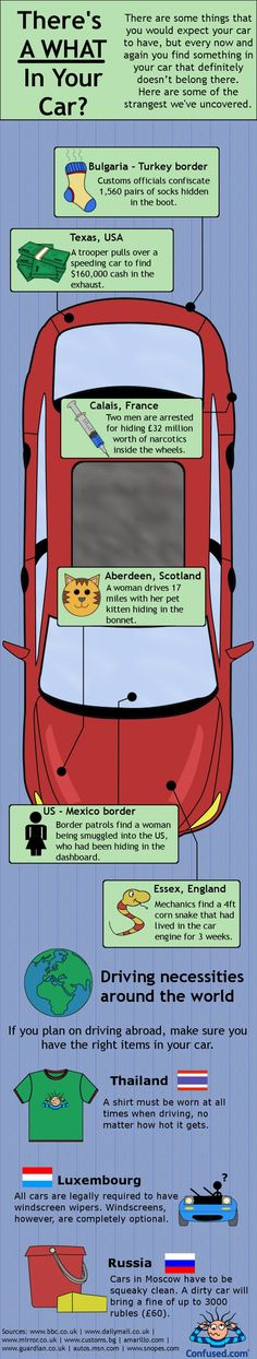 There's a What in Your Car? #infographic