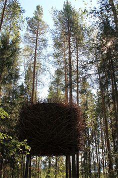 The Bird's Nest - Treehotel - Harads, Sweden - 2010 Inredningsgruppen #treehouse #house #nest #forest #landscape #design #architecture