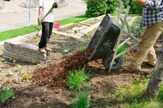 My Neighbors Much My Garden | Stretcher.com - Free and extremely cheap sources of mulch