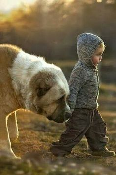 little boy and his big dog