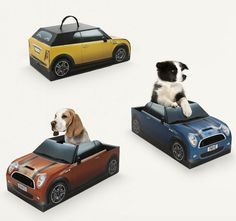 Leuke actie. MINI Gives Newly Adopted Puppies Free Topless 'Car' As Dog Beds