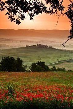 La Toscana, Italy val D'orcia Siena