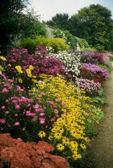 Waterberry Gardens, Oxfordshire ... Herbaceous border