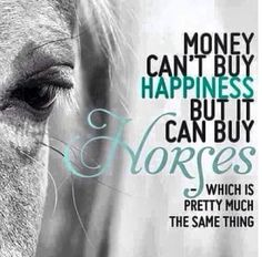 """""""Money can't buy happiness, but it can buy horses…which is pretty much the same thing."""""""