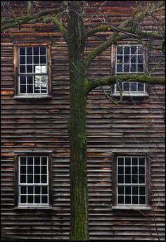 wood facade   ♥Leca♥