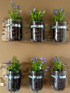 Great for herbs — but also for organizing office supplies, bathroom stuff, and more!