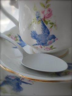 bluebird dishes.