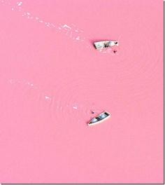 pink lake, seas, harmless, lakes, pink chic, natur, lake retba, place, salts