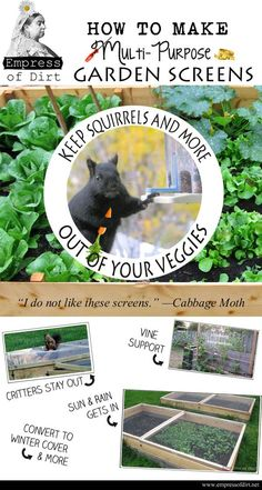 DIY Garden Screens - for raised beds, vines, and more - keep the critters out.