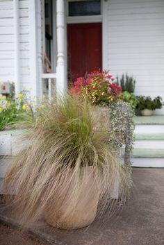 Barr Mansion and Artisan Ballroom.  Organic grounds.  Photographer: Nicole Chatham Photography
