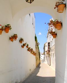Cadiz, Spain- this is where I started my love affaire with Europe.... I can't believe it's been 10 years since I spent the summer here!
