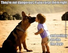 No bad dogs - just bad owners.