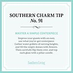 Southern Charm Tip No 91