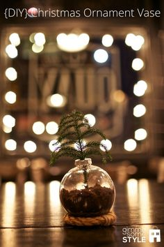 She used a plastic clear ornament, potting soil, a small live christmas tree branch and some rope shaped into a circle. I think they could even be cute using mini ornaments to have as individual table settings. You could even replace the soil with water and glitter to give a shimmer to it! So many options!