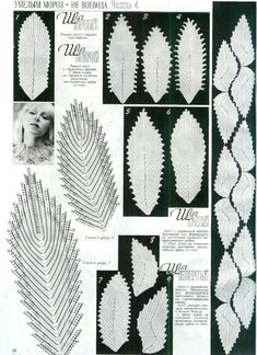 Collection embossed leaves.- Russian Service Online Diaries