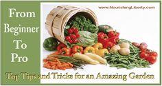 garden garden, idea, gardening tips and tricks, amaz garden, food facts, teaching kids, kid cook