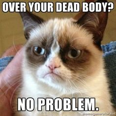 Grumpy Cat - Over your dead body....