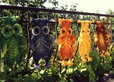 Macrame owls by Jolanta Surma