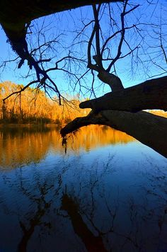 """Fear"". Cape Fear River at Raven Rock."