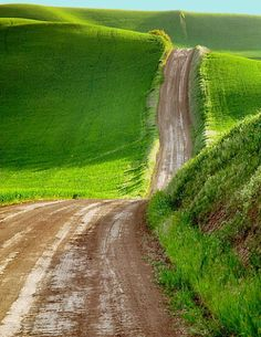 .Country roads, going on and on...