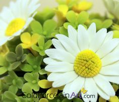 Cold Porcelain Art. Handcrafted Flowers. www.coldporcelain... #daisy, #coldporcelain , #flowers , #gifts