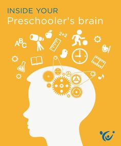 What insights can neuroscience offer parents about the mind of a preschooler?