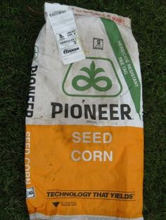 What Are GMO Seeds: Information About GMO Garden Seeds