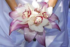 Trying to find a color scheme. I love orchids. <3