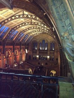 Twitter / Exospherebecca: Thank you @NHM_London great ...