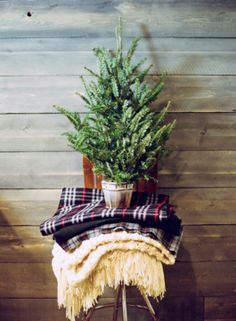 Love this little rustic and simple tree--image via Decor8 #zincdoor #holidaystyle #christmas #modern