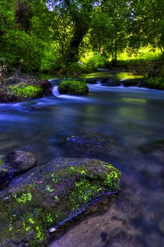 Colors of nature: Treja River, Italy by Claudio Cantonetti