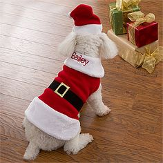 Personalized Dog Santa Suit -  so cute!
