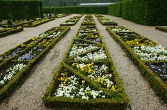 25 Ideas for Fabulous Boxwoods --> http://www.hgtvgardens.com/shrubs/25-ideas-for-fabulous-boxwood-designs?soc=pinterest&s=18