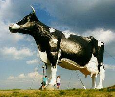 Giant Cow - New Salem, North Dakota