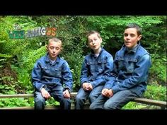 "The Wee Amigos  ""Say You Love Me"" Ireland"