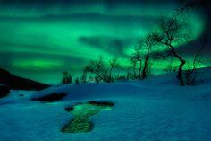 Aurora borealis in Northern Norway By Arild Heitmann