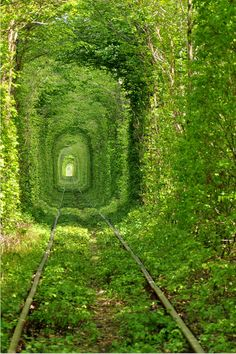 Incredible train tunnel in the Ukraine. Photography by Oleg Gordienko.