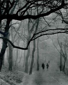 1957 -- foggy walk