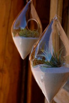 From Plantology  http://www.etsy.com/listing/73954371/hanging-air-plant-teardrop-terrarium