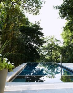 ... infiniti pool with a leafy green canopy,