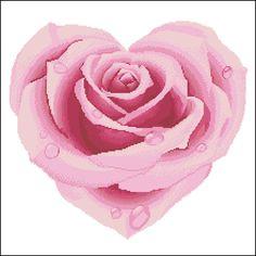 Rosa coração